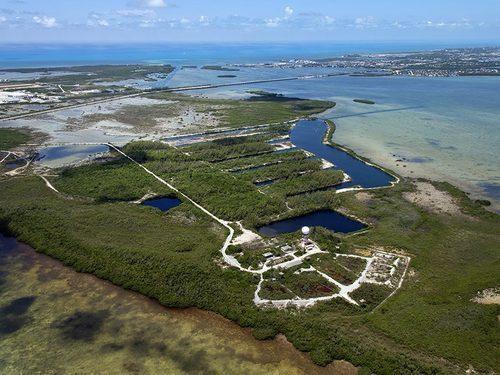 Подводные лодки в степях Флориды