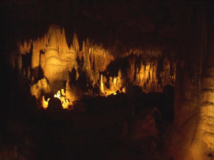 Florida Caverns State Park, Marianna, FL