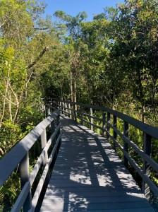 Парк в Кокосовом ручье
