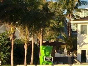 Приключения писателя Майн Рида во Флориде.