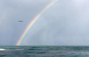 После рассвета - на океане!