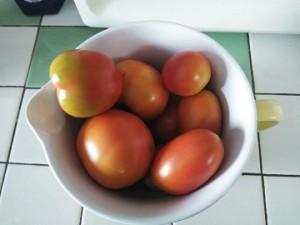 Сеньер помидор и другие