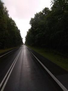 А это – тихая лесная дорога в Польше.