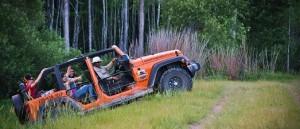 Оранжевый джип - в флоридских джунглях
