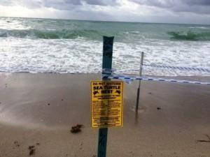 Над пропастью на пляже