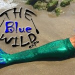 THE BLUE WILD OCEAN ADVENTURE EXPO
