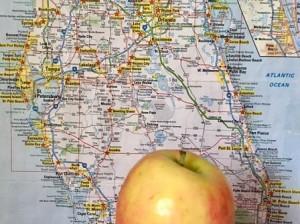 «Большое яблоко» катится в Майами