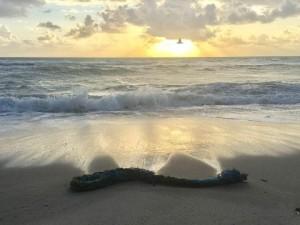 Лишь волны морские прославят в веках!