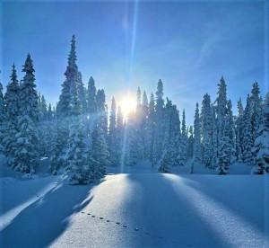 Жизнь в горах, или  восемь дней, которые потрясли мой мир
