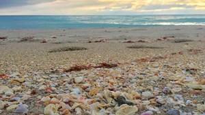 А вечность — как морской песок